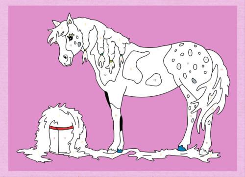 Ravensburger 55865 Malen Nach Zahlen Pferde Und Ponys 55865