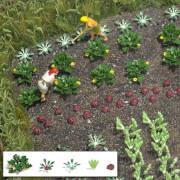 H0 Gemüse & Salat