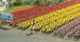 H0 120 Tulpen