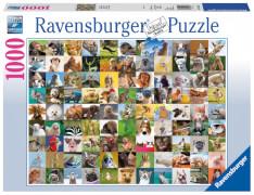 Ravensburger 196425 Puzzle: 99 lustige Tiere 1000 Teile