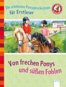 Arena - Von frechen Ponys und süßen Fohlen: Der Bücherbär: Die schönsten Ponygeschichten für Erstleser, Lesebuch, 144 Seiten, ab
